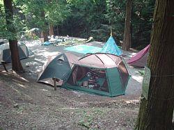 20090816-15.jpg