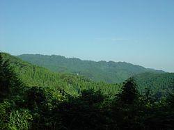 20090816-19.jpg