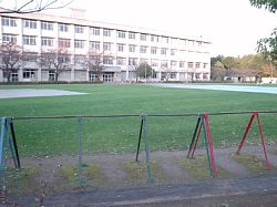 20091115-161516.jpg