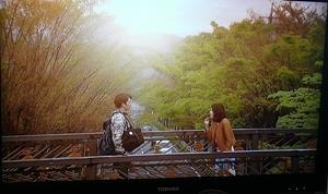 20100530-sunao2TV.jpg