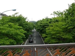 20100530-sunao2g.jpg