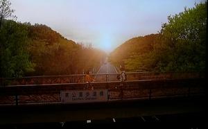 20100530-sunao4TV.jpg