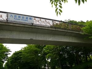 20100530-sunao5g.jpg